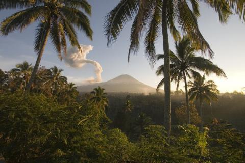 Восхитительная Индонезия