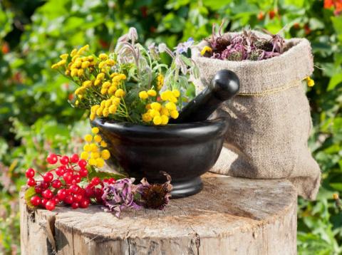 Уникальные советы сибирской травницы - правильное питание
