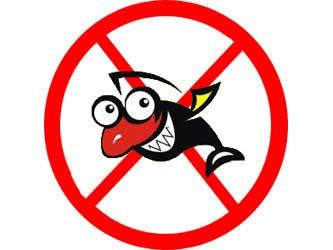 Весенне-летний нерестовый запрет на рыбалку 2014 года в России