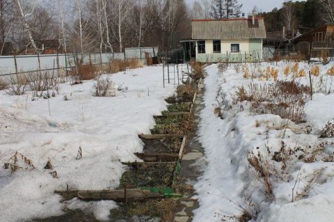 Снег в саду: где полезен, а где опасен
