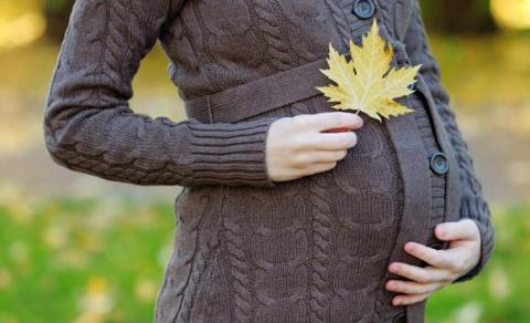 На фоне кризиса в РФ растет популярность суррогатного материнства