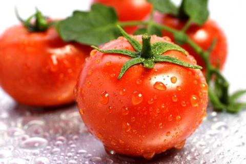 Уникальный способ посева томатов... под зиму