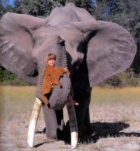 Типпи Дегре и дикие животные…