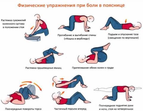 Упражнения для здоровья пояс…