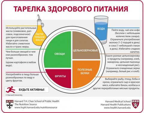 Гарвардская школа общественного здравоохранения опубликовала правила здорового питания на русском языке
