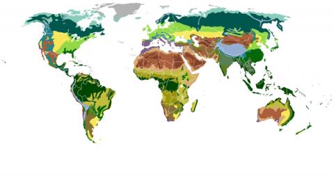 Природные зоны мира. Арктические пустыни