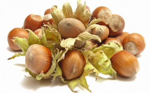 Как создать свой ореховый сад