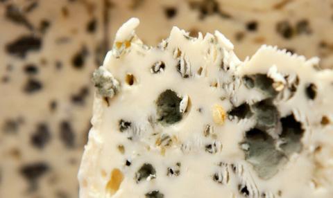 В России изготовили сыр с плесенью