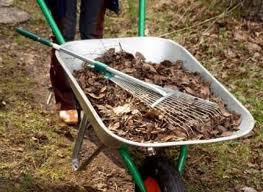 Как перекопать сад осенью и подготовить его к следующему урожаю