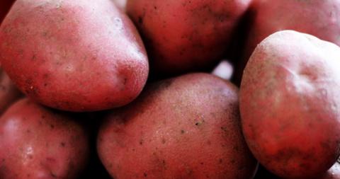 Красный картофель нормализует давление