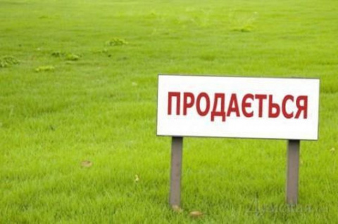 Отказ от кредитов МВФ заставит Киев продать всю землю