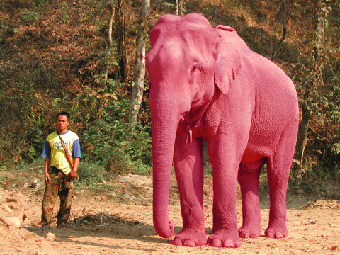"""Фэнтези """"Розовый слон"""""""