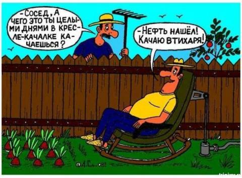 Дачный анекдот:)