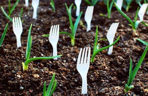 12 полезных советов садоводам