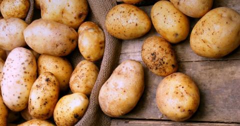 Картошка — лучший друг любой…