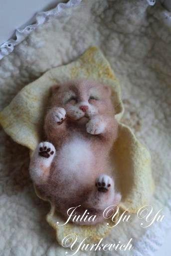 Очаровательный котенок. Сухо…