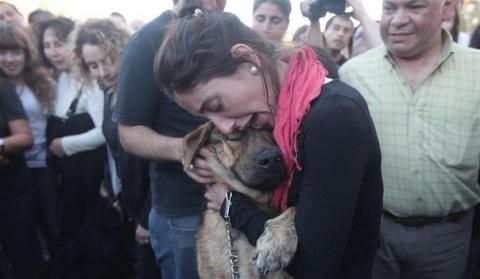 Эта девушка нашла своего пса…
