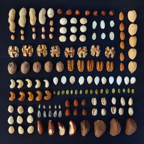 УЗЕЛОК НА ПАМЯТЬ. Как правильно есть орехи