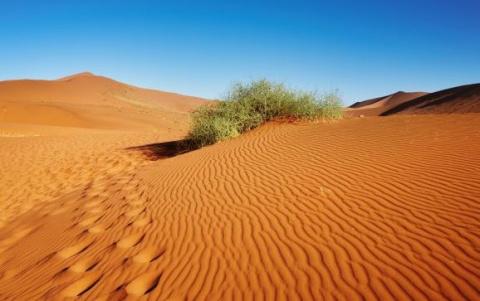 В США нашли поющую пустыню