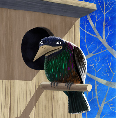 Скворечник со всеми удобствами - каким должен быть домик для птиц