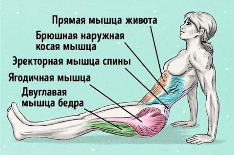 Упражнение, чтобы сжечь жир …