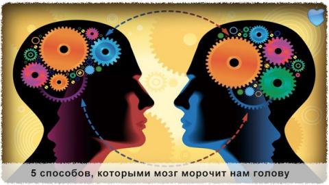 Интересное о мозге :) ... - …