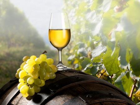 Молдавские производители вина надеются вернуться на российский рынок