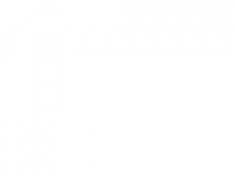 светлана кошкина медведева (Medwedewa)