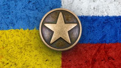 Украинские инспекторы законч…