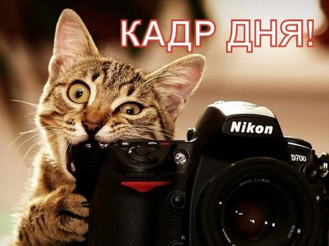 Кадр дня: Спа салон!))