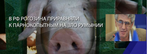 Гозман сравнил Рогозина со свиньей.