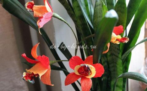 САМОДЕЛКИ. Орхидеи из конфет и гофрированной бумаги