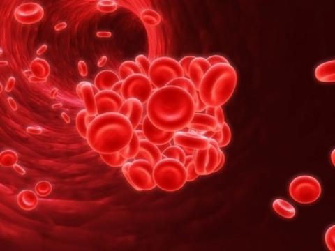 Как избежать образования тромбов
