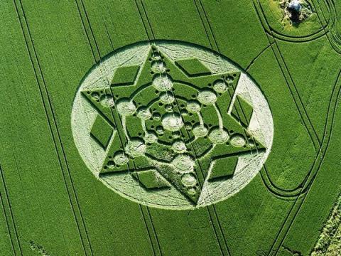 Кто и зачем на полях рисует круги?