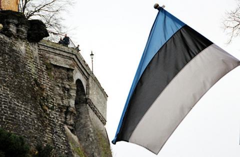 Русскоговорящие жители Эстонии против НАТО