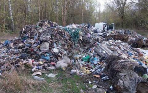 Великий мусорный путь: Украина в зеркале мусорной проблемы. Сергей Гуркин