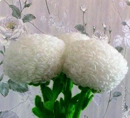 Хризантемы. Вяжем крючком