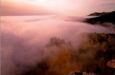 Остерегайтесь багрового тумана