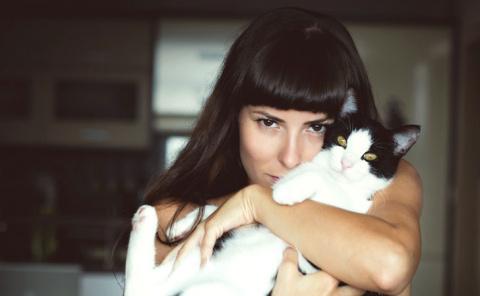 Ленивый кот стал причиной мо…