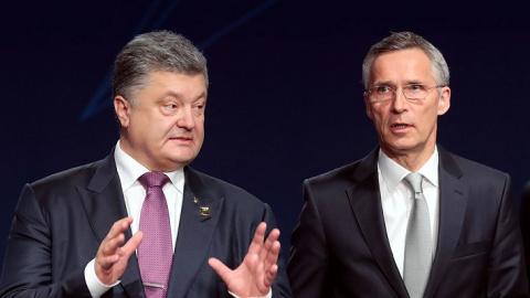 НАТО одобрила решение Пороше…