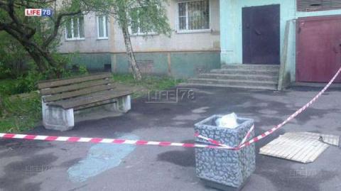 В Петербурге на женщину с ре…