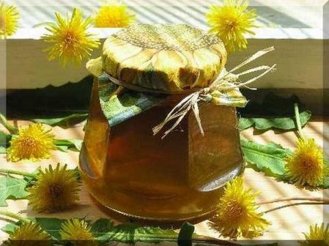 Варенье из одуванчиков - лекарственный мёд