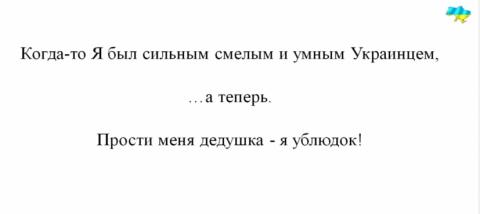 70 лет победы, 9 мая 2015 г., Киев. Прости меня дедушка - я ублюдок