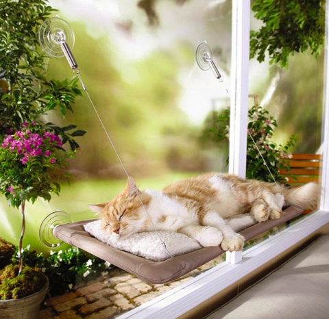 20 дизайнерских штучек, которые однозначно понравятся вашей кошке