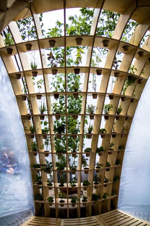 Надувные парники сделают растения и людей счастливыми