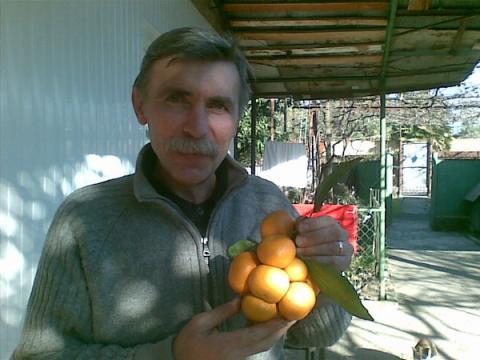 Александр Корбанов