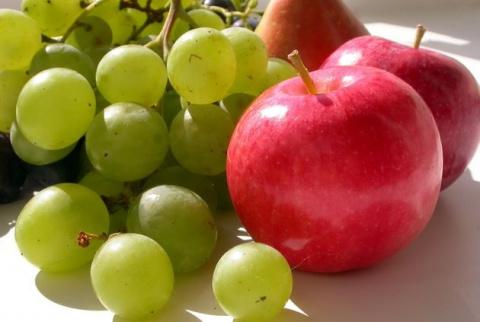 И в Подмосковье растет виноград