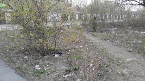 В Челябинске появился правил…