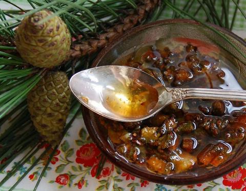 Уникальное средство от кашля, ангины, простуды — сосновый мед