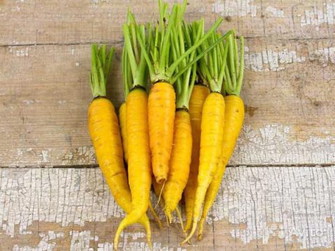 А у нас в магазине обновки: эксклюзивные чудо-морковки